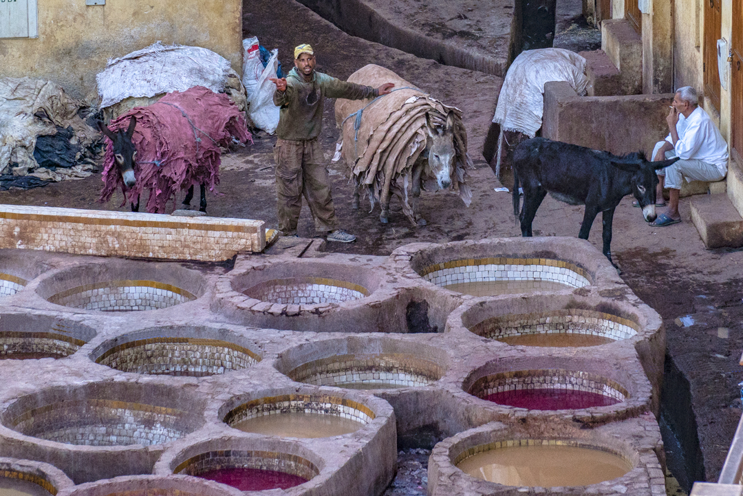 My Top Travel Tips for Morocco. In the medina in Fez workers jump into these vats and dye the hides by hand. They wear boots and gloves and put oil on their bodies so their skin does not change to the color of the dye.