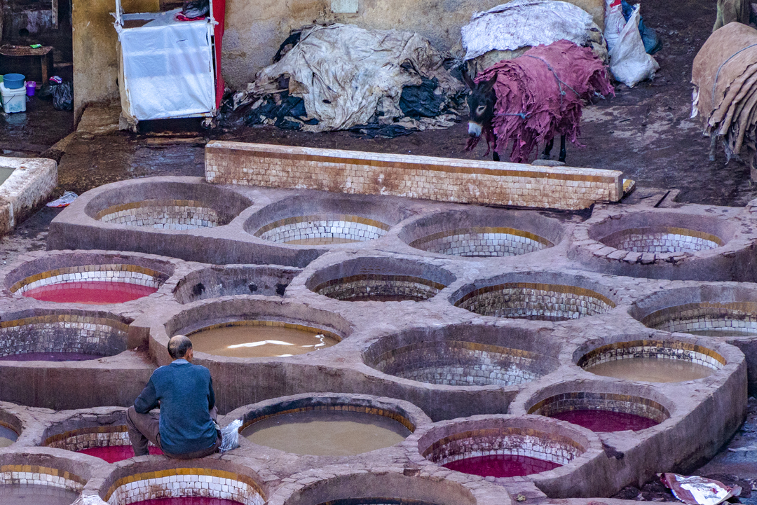 The Fez tanneries. The city of Fez is Morocco's third largest city. Founded in the 8th century, is now houses over one million people.