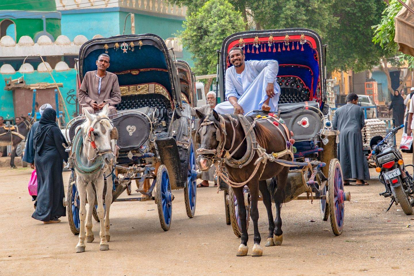 Fight Poverty Through Travel. These horse and buggy drivers in Kom Ombo, Egypt drove us to the local market where we interacted with the amazingly interesting and fascinating Egyptians.